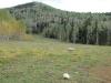 True Grit: Owl Creek Pass, Shootout scene, Deb\'s Meadow
